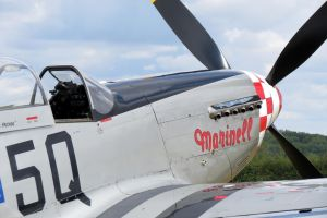 p51d mustang Marinell by Sceptre63