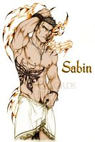 Sabin and Doubt by GsLordsIta