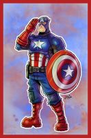 Mr. Stars and Stripes by ZipDraw