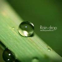 rain drop 2 by derrickfong