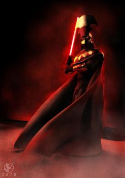 The Dark Side of the Force by Cetosc