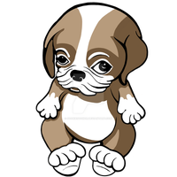 Pug Puppy Brown and White by sookiesooker