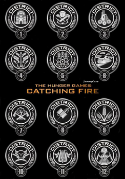 Catching Fire Poster by SammyCave