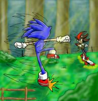 Sonic and Shadow - Fighting by nic-sama
