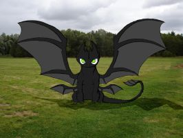 Toothless by Toothless6reach