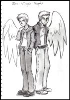 One Winged Angels by SkyeCrys