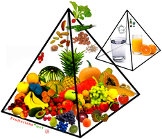 Fruitarian Food Pyramid by lenaveg