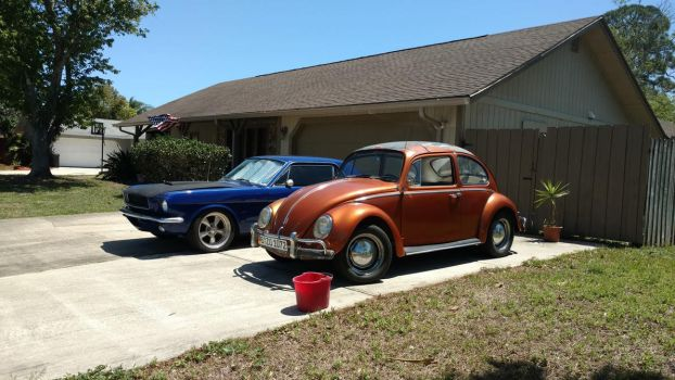 1965 VW type1 and Mustang by BackMasker