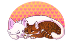 Pers :: Cat Romance by HolwingWolfy