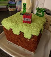 minecraft Cake by Cosmisia