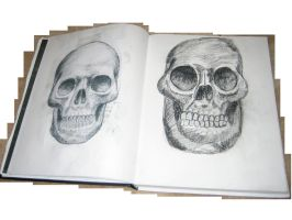 Skull Printed + Drawn by ISS51