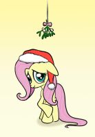 Fluttershy by narbarnar