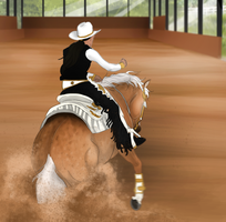 TRC Training Show - Reining by WHStables