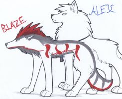 .:C:. Blaze and Alex by xRainbowDawnx