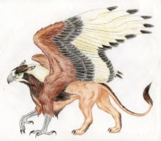 Gryphon by TalonV