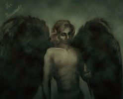 VC: With black wings by Melissa-light