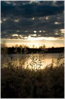 Wivenhoe Sunset 4 by champir
