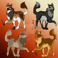Some wolf adopts by DracKeagan