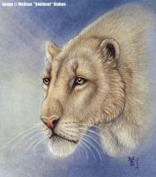 North American Cave Lion by Art-of-Sekhmet