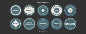 Flat Vector Badges by blugraphic