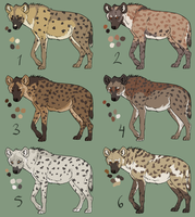 Spotted Hyenas (free options open) by Pred-Adopts