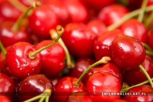 cherries 2 by KowalskiEmil