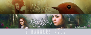 2 Banners PSDs by Evey-V
