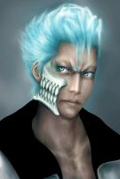 Grimmjow jeagerjaques by AFunny