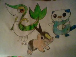 Pokemon Starters. by BlackRoseLegend
