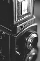 Flexaret V 02 by Zavorka