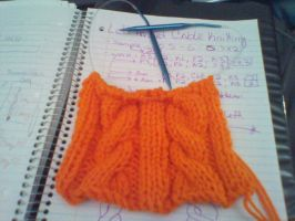 A Knitting First: Cables! by CreationsbyJolie