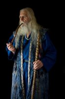 2014-08-01 Wizard Blue 03 by skydancer-stock
