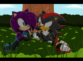 Samantha and Shadow in Sonic X by Domestic-hedgehog
