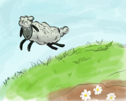Sheep by Rainezi