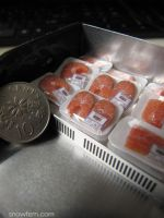 1:12 scale miniature raw salmon cuts by Snowfern
