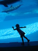 Child with dolphin by boxofslavery