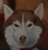 Lauren-Final-Dog Detail by Westminister