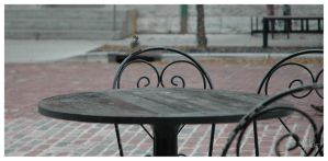 Bird on a Chair by SweetMysterium