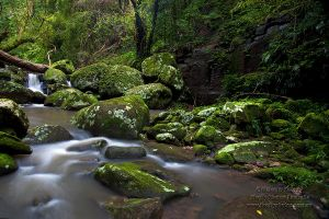 River of Dreams by FireflyPhotosAust