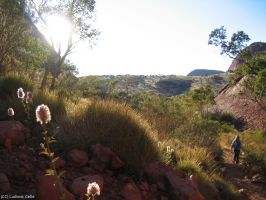 Australia - Kata Tjuta path by Ludo38