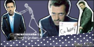 House M.D banner by LaLaShivers
