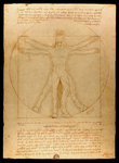 The Vitruvian Horse (AC #115) by Storm-Engineer
