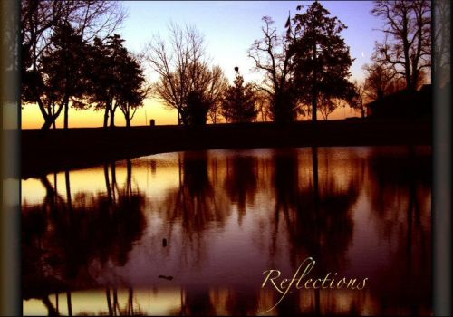 Reflections by qbush