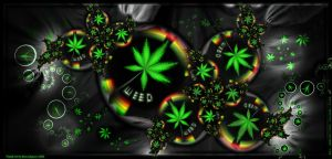 Weed by Club-Marijuana