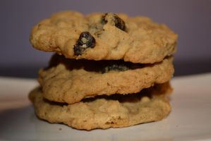 Oatmeal and Raisin Cookies by Lily-Gangsta