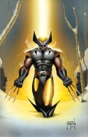 Dark Wolverine by JeffieB
