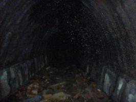 Abandoned Tunnel by TheVisionaryGuy