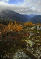 View of Norway by Hestefotograf