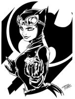 Comic Shop Catwoman by KidNotorious