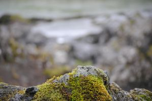 Iceland Photos 39 by The-Doomed-one
